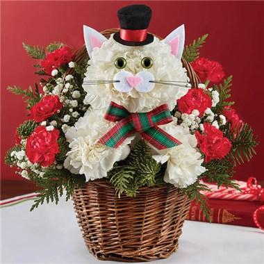 1 800 Flowers Christmas Caroling Cat 147277 Fd 03 25 16 Flat